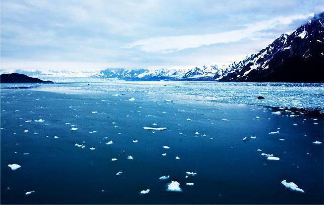 Солтүстік Мұзды мұхит теңізінің: ерекшеліктері тізімі, сипаттамалары